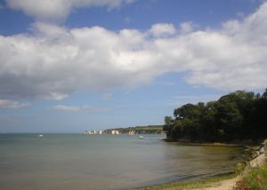 Dorset coast - Studland to Golden Cap