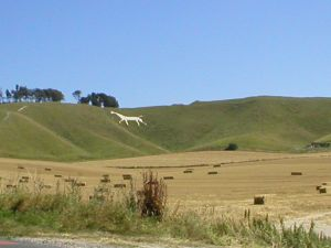 White Horses carved on Wiltshire Downs
