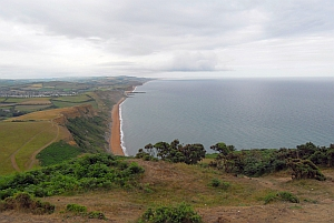 West Bay from Thorncombe Beacon